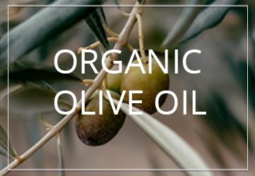 BANNER ORGANIC OLIVE