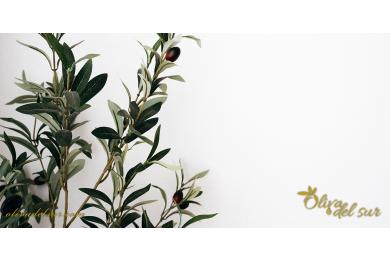 Alergias al olivo